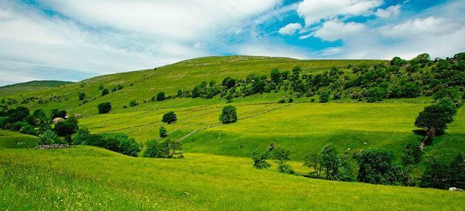 Оформление наследства на дом и земельный участок