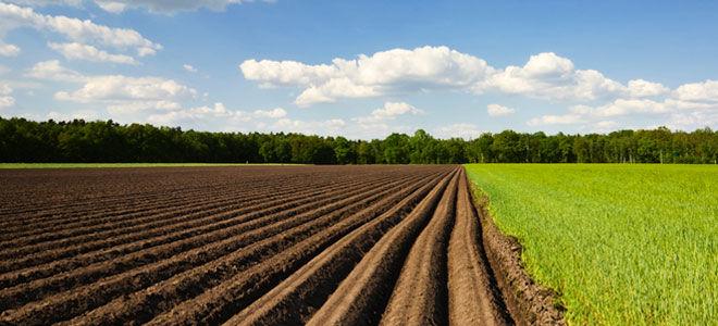 Как вступить в наследство на земельный пай